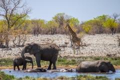 kruse_namibia2015_150