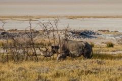 kruse_namibia2015_186