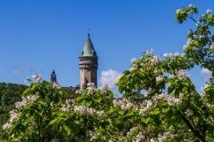 kruse_luxemburg-2020_027